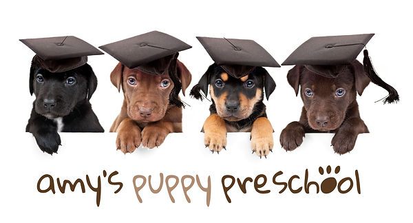 puppy_school_logo1429779023.jpg