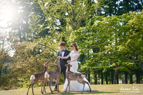 【囍】家輝 & 琪琪 自主婚紗 @日本京都