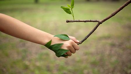 Un partenariat notamment environnemental