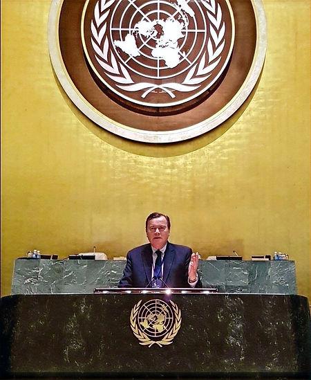 Patrice Martin-Lalande intervient à la tribune des Nations Unies à New York