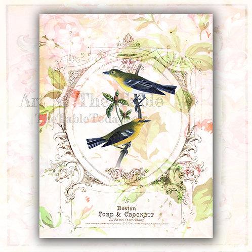 """Parisian Birds"" Digital Paper Collection"