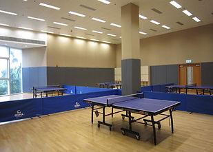 indoor-game.jpg