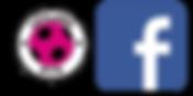 Leyland BTR Facebook