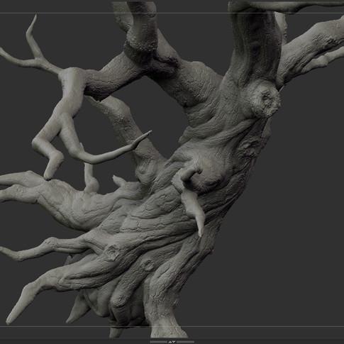 tree_F_01.jpg