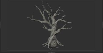 tree_F_07.jpg