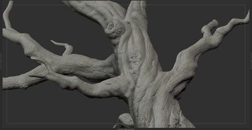tree_F_03.jpg