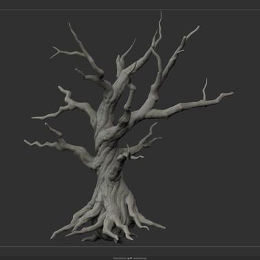 tree_F_06.jpg