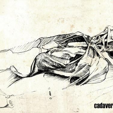 Cadaver study - CSULB