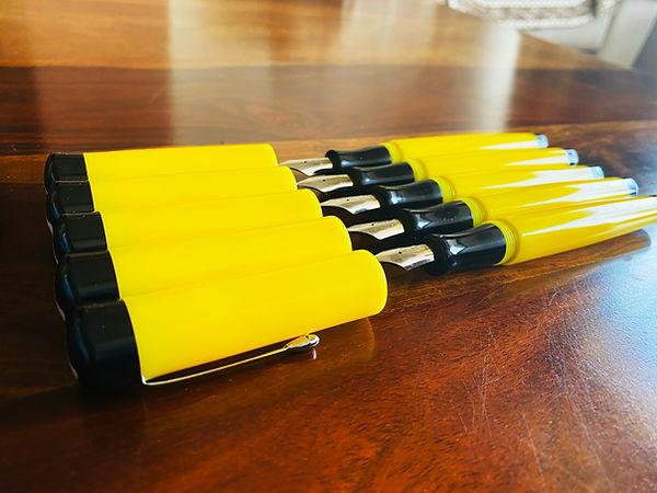vazir jaune (5).JPG