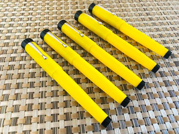 vazir jaune (10).JPG