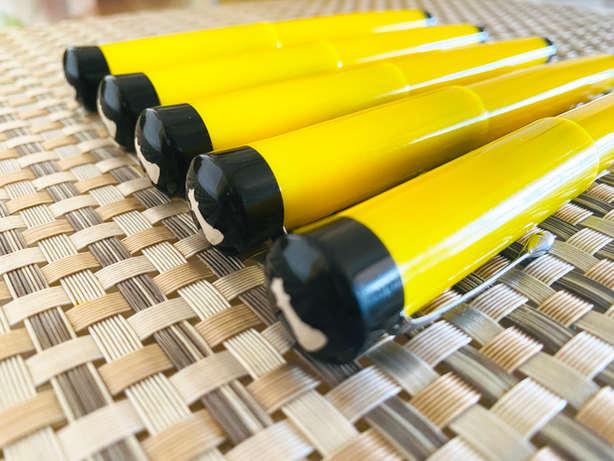 vazir jaune (12).JPG