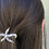 Thumbnail: Star fish  hairclip