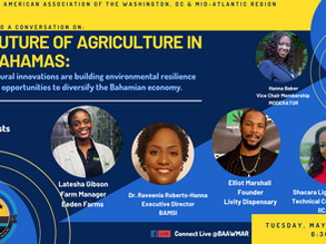 The Future of Agriculture in the Bahamas