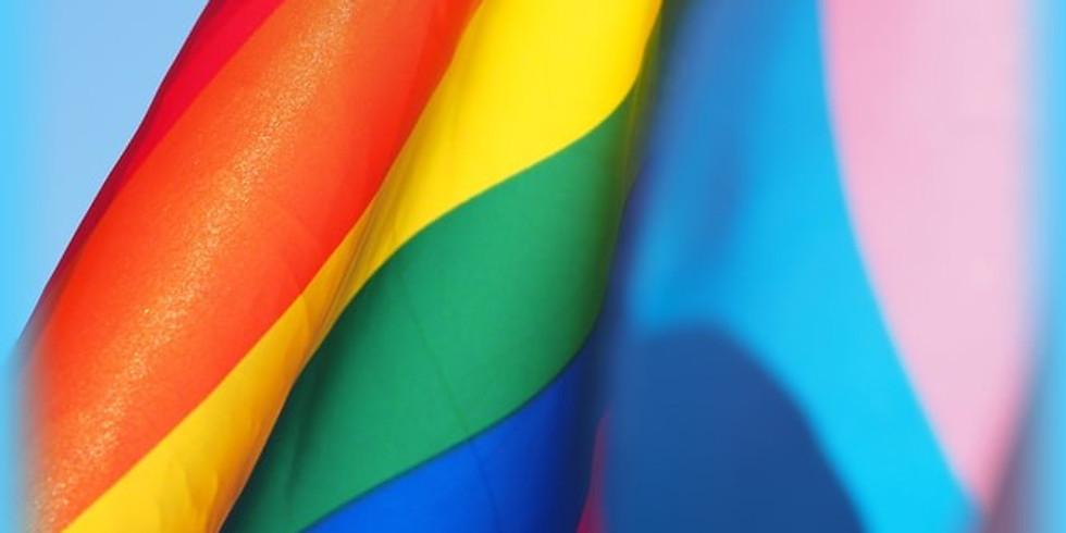 Queer & Trans Inclusive Lactation Basics Workshop