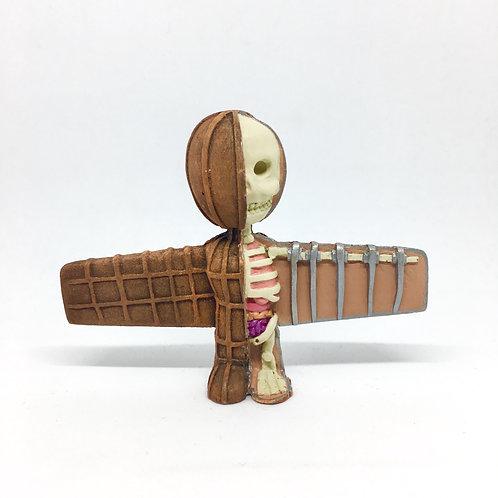 Wor Angel Anatomy