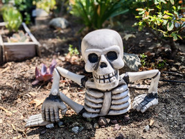 skeleton in ground.jpeg