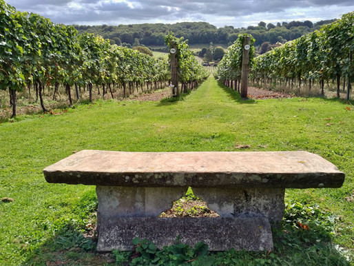 International Food, Wine & Travel Writers Association 2021 Photo Contest