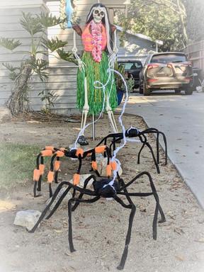 halloween spiders and hawaiaan skeleton.