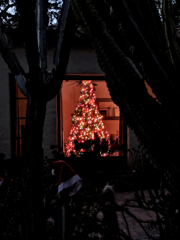Christmas Tree in window Covid 2020