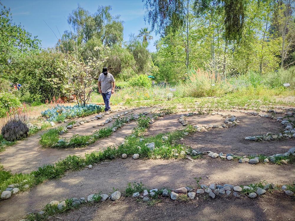 Man walks the Labyrinth at Arlington Garden