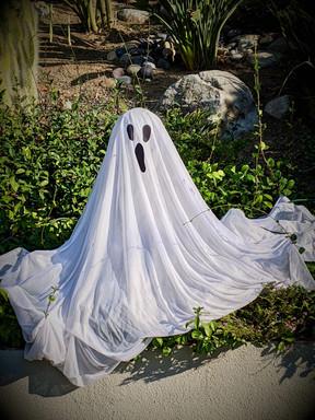 halloween ghost.jpeg