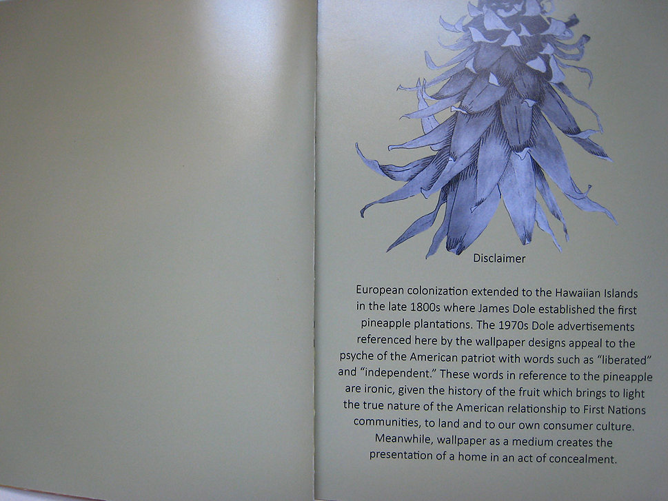 11. Wallpaper Lookbook Disclaimer.jpg