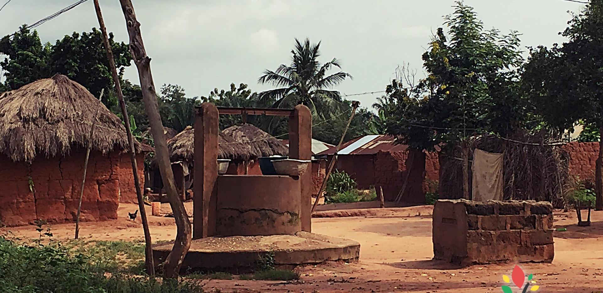 ONG_Sementes_da_Saude_003_Missão_Benin_2