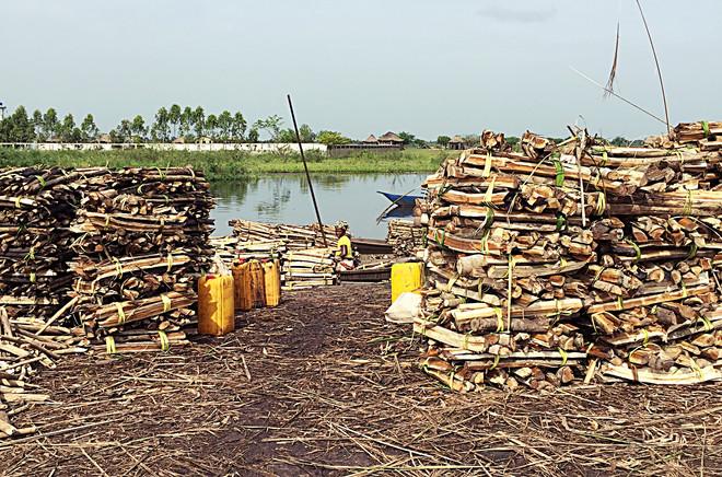 ONG_Sementes_da_Saude_018_Missão_Benin_2