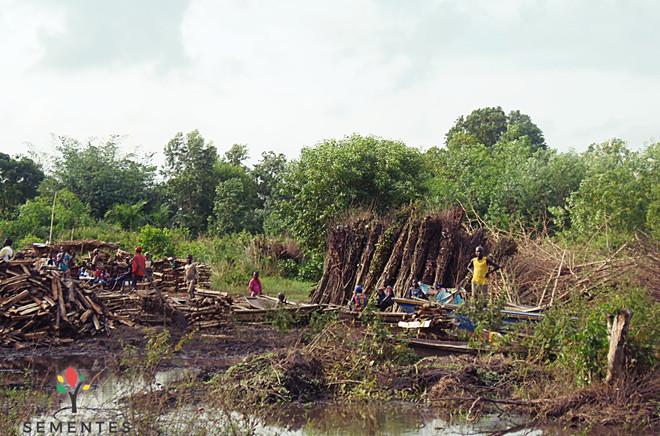 ONG_Sementes_da_Saude_279_Missão_Benin_2
