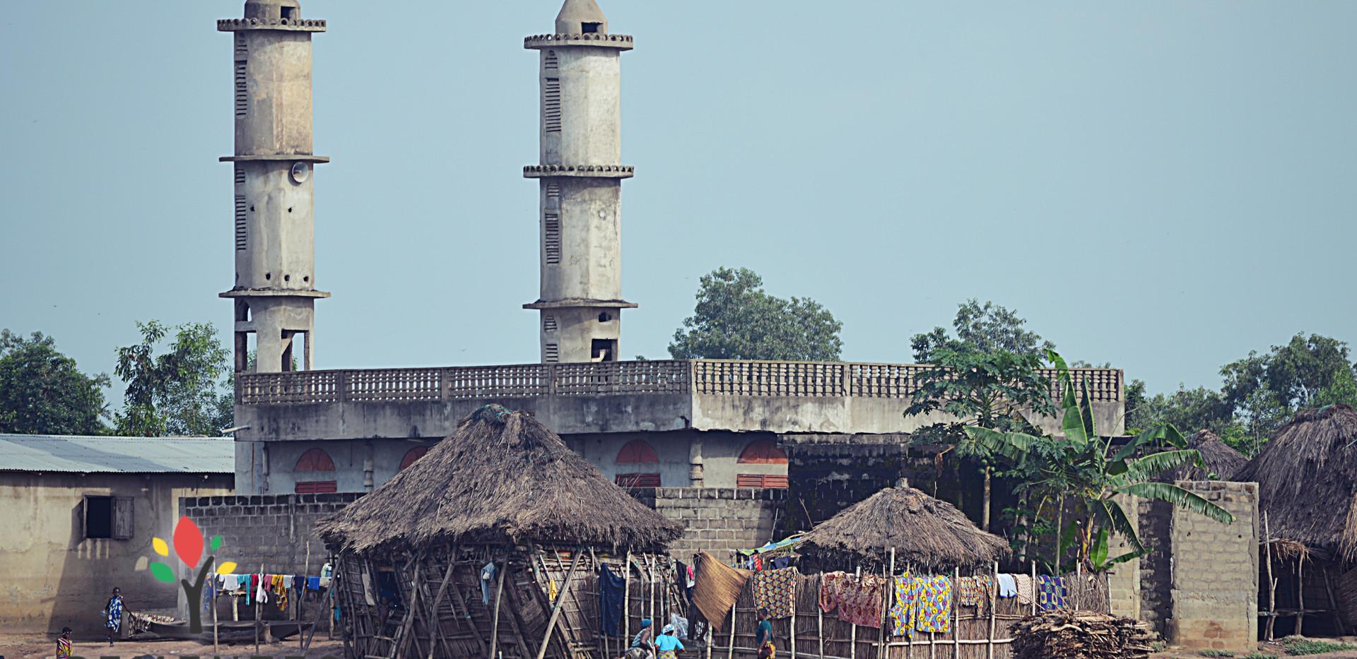 ONG_Sementes_da_Saude_309_Missão_Benin_2