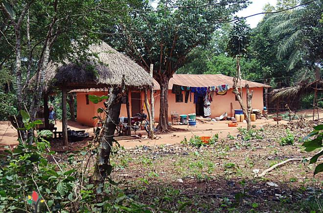 ONG_Sementes_da_Saude_247_Missão_Benin_2