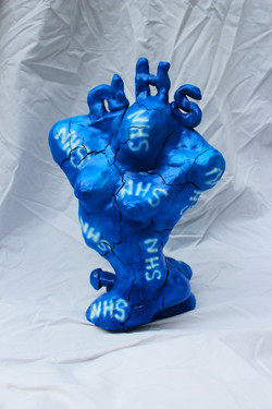 NHS (numerous.hope.synergy)
