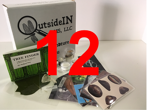 12 Month Nature Box Subscription