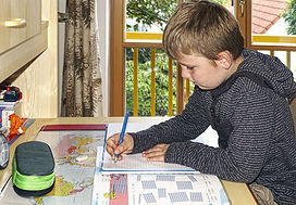 homeschool boy--pixabay.jpg