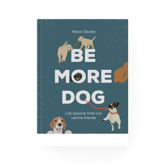 be more dog.jpg