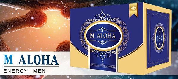 W-M-Aloha-Thailand_๒๐๐๔๐๒_0008-1024x458.