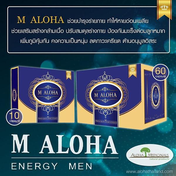 W-M-Aloha-Thailand_๒๐๐๔๐๒_0010-768x768.j