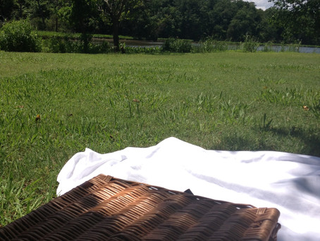 Picnicking in Williamsburg