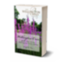 Wellington cross 3d book cover with gold