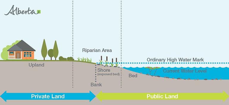 Shoreline Graphic.jpg