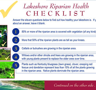 Looking_at_my_lakeshore-checklist-Cover.