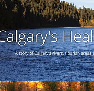 Calgary Healthy Rivers story map.JPG