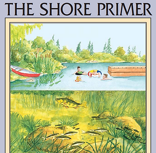 Shore Primer cover.PNG