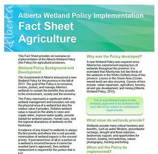 Wetland Compensation factsheet cover.JPG