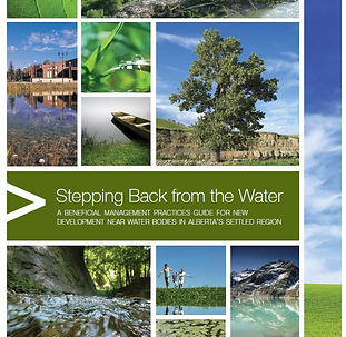 Steppingbackfrom water cover.JPG