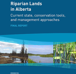 Riparian Lands Alta - Conservation Mgmt