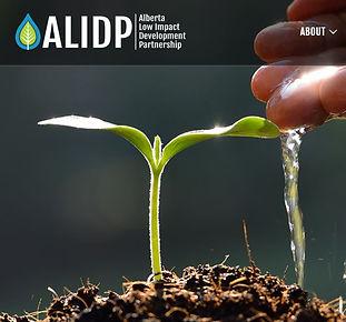 ALIDP screenshot logo homepage.jpg
