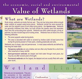 Value_of_Wetlands_C&F.jpg