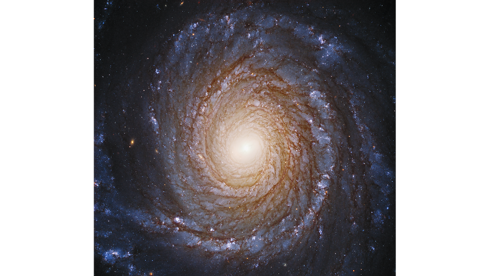 La magnifique galaxie spirale NGC3147, avec ses bras constitués d'étoiles, de gaz et de poussières, s'enroulant autour du disque central qui abrite un trou noir. Image composite. Crédit : Hubblesite