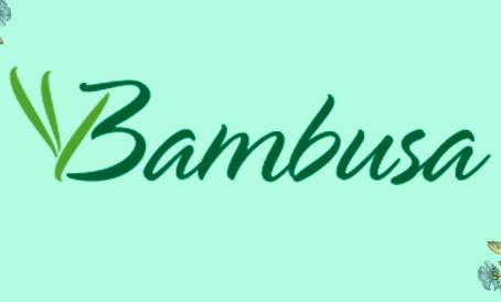 BAMBUSA moda íntima orgânica e sustentável